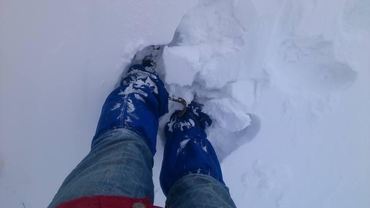 Die Leguano zusammen mit Schneegamaschen im Tiefschnee
