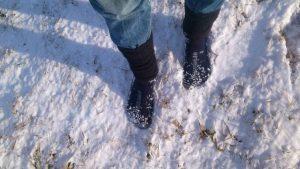 Einsatz der Leguano im Winter bei Schnee
