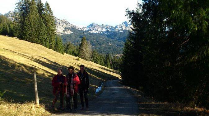 barfuß wandern im Tannheimer Tal