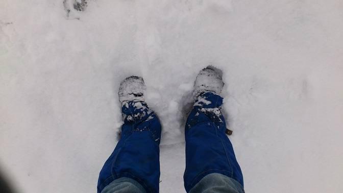 Mit Leguano im Schnee