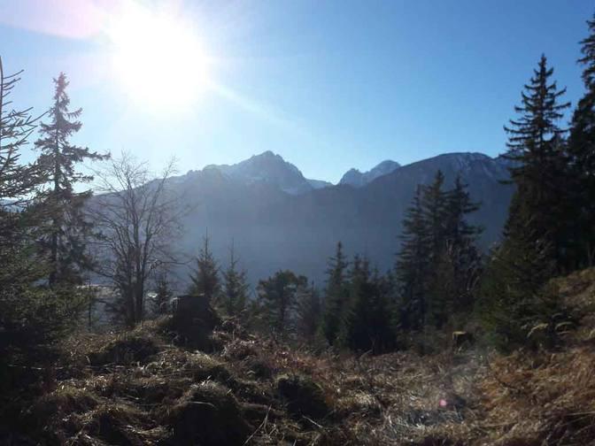 Blick auf Pinswang und die Lechtaler Alpen