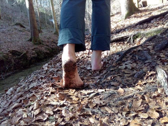 Barfuß über den Waldweg