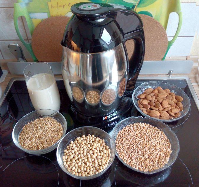 Pflanzenmilch selber zubereiten in der Soyabella