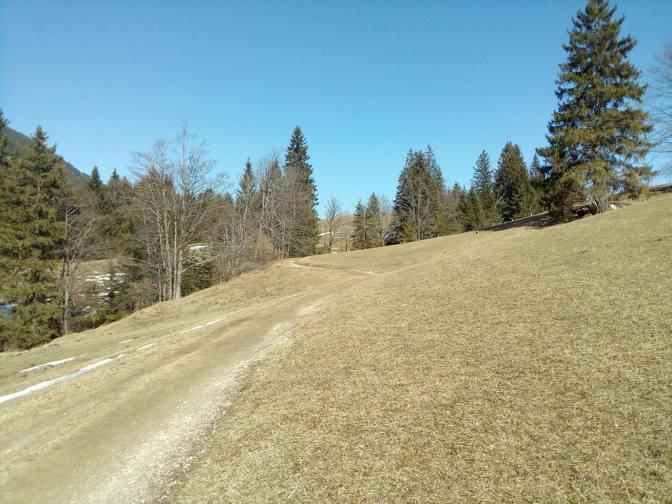 Über die weichen Almen zurück nach Oberjoch