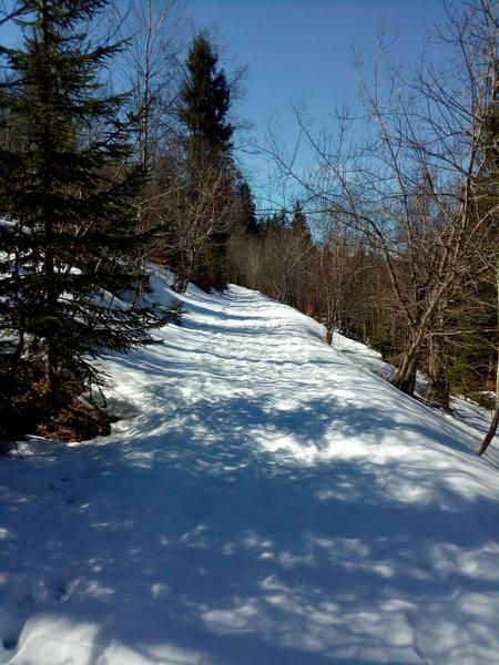 Schöner verschneiter Winterwanderweg
