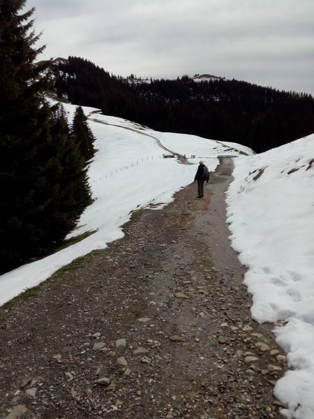 Nach einer langen barfuß-Schneepassage durch den Wald werden jetzt die Minimalschuhe ausgepackt