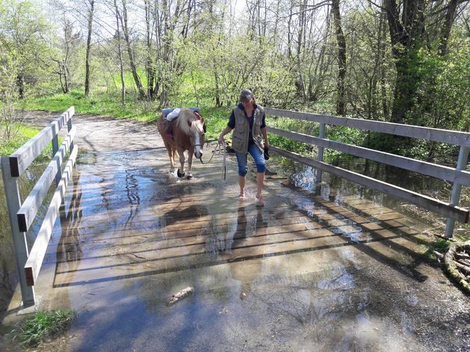 Hochwasser kann ganz lustig sein