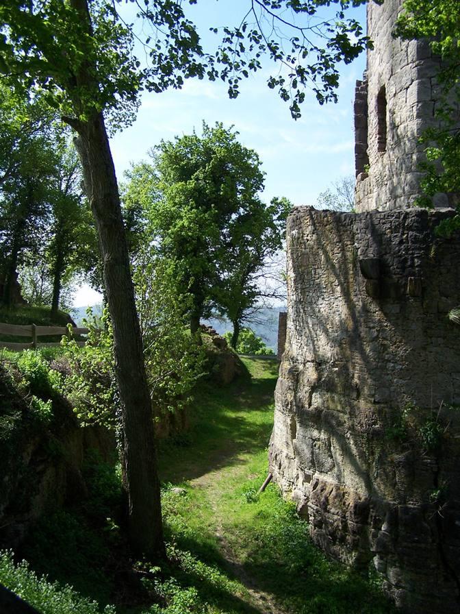 Schöne Graswege führen um die Burgruine herum
