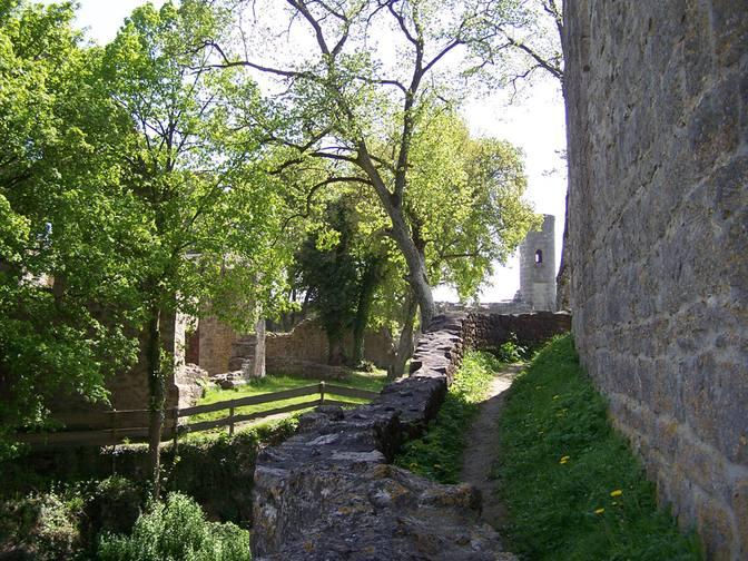 Idylle an der Burgruine Homburg