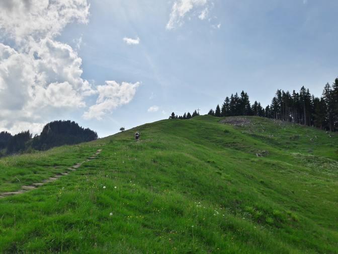 Wiesen bei der Kappeler Alp