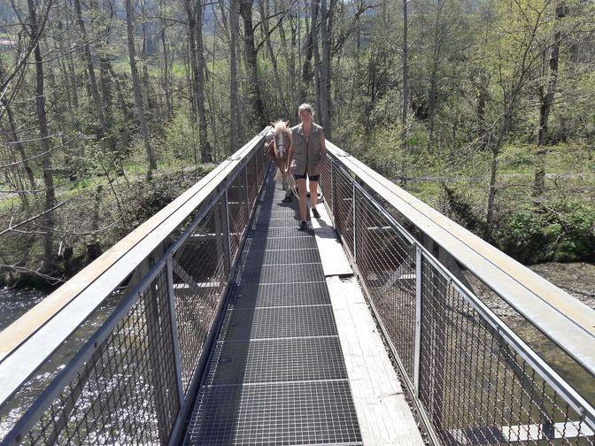Marley und Eva auf der Gitterbrücke