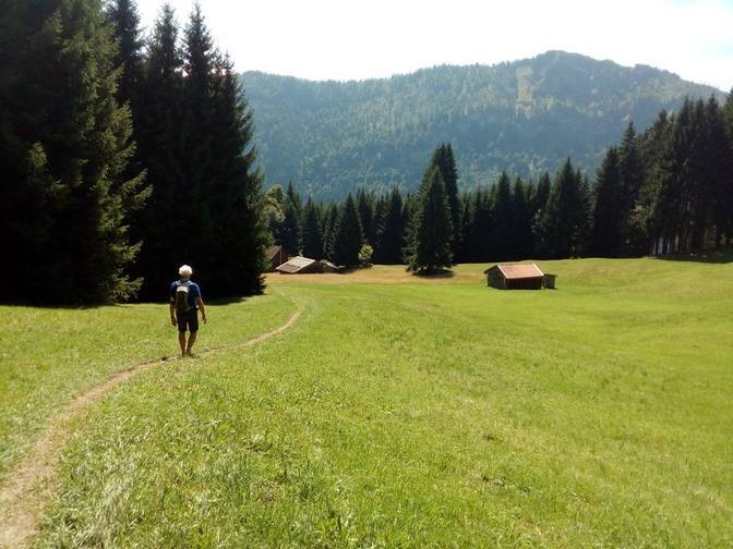 Ein Wiesenweg führt über die Alm zur Gundhütte