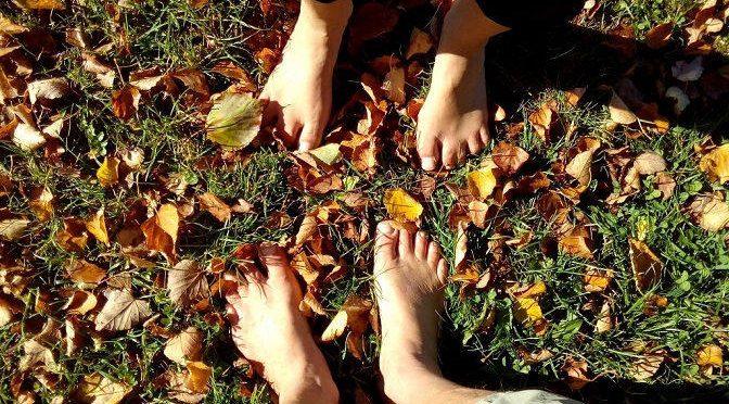Herbst-Tipp für Barfuß Einsteiger