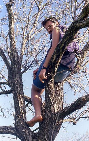 Harald barfuß im Baum (um 1995)