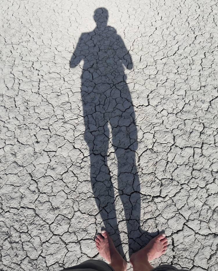 Der Körper wirft einen Schatten auf den mit vielen Schrumpfrissen durchzogenen Untergrund