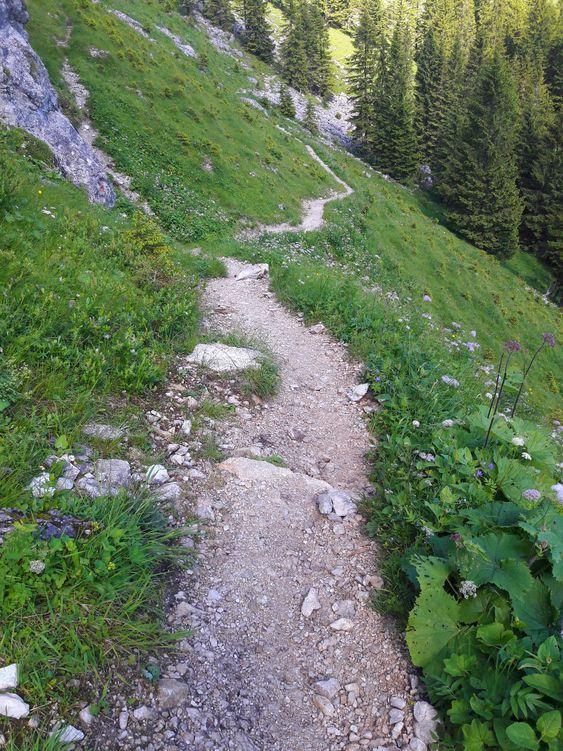 Bergpfad Richtung Böser Tritt