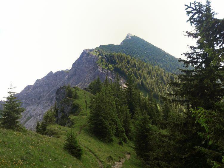Blick auf den Pfad zum Gipfel