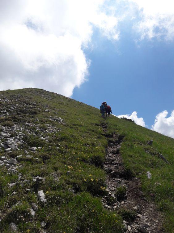 Grashang am Gipfel