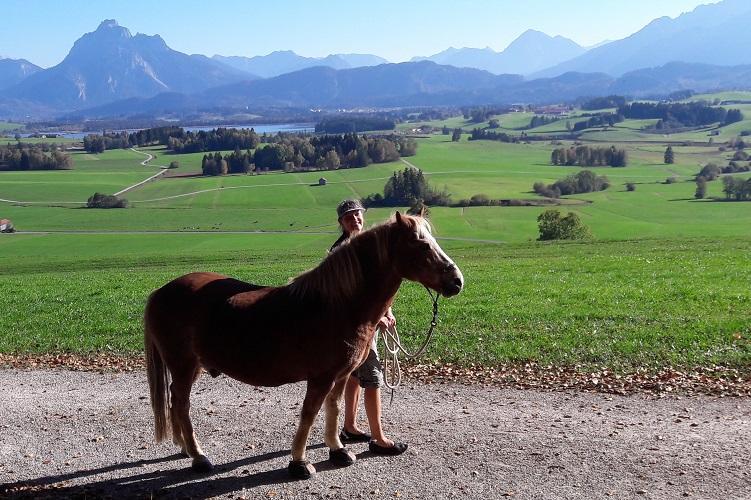 Pferd und Mensch auf dem Panoramaweg in Hopferau