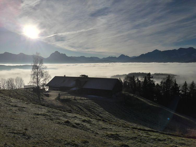 Von der Alpe Beichelstein schaut man hinunter auf den Nebel über dem Hopfener Tal