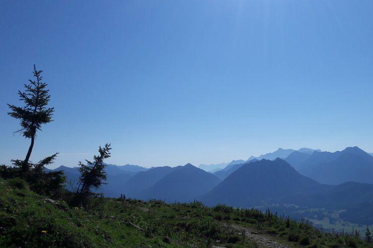 Der Alpengartenpfad auf dem Hahnenkamm