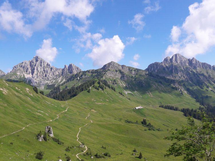 Lechaschauer Alm auf dem Hahnenkamm bei Reutte/Tirol
