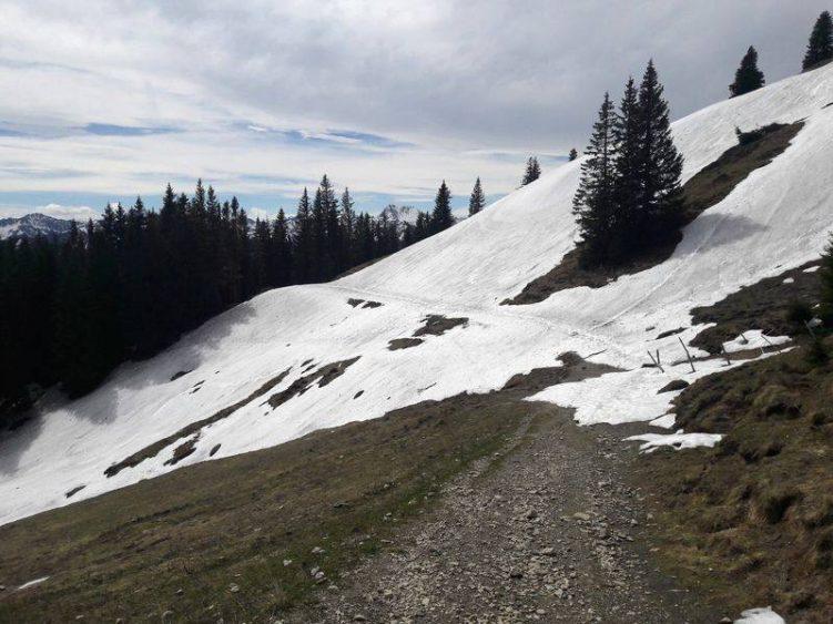 Weg durch einen Schneehang