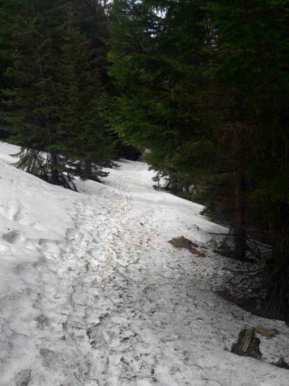 Festgetretener Schnee