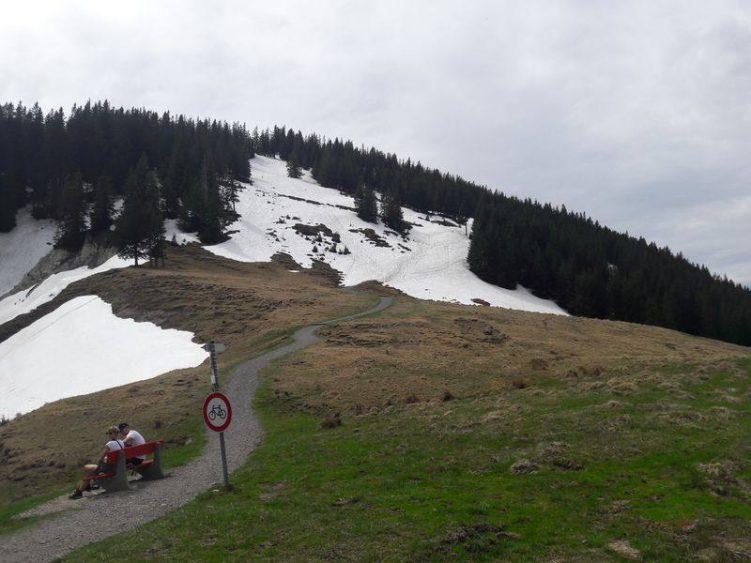 Edelsberg mit Mix aus Schnee und Weide