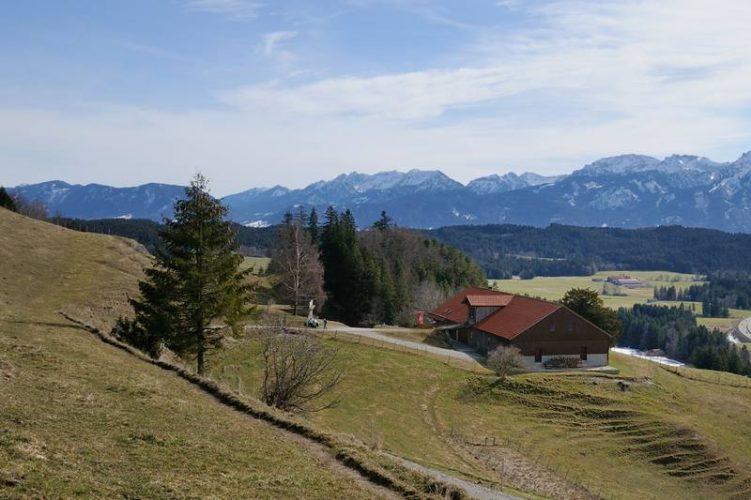 Barfußfrühling auf der Alpe Beichelstein im Allgäu