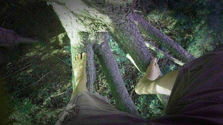 Barfuß auf einen Baum klettern