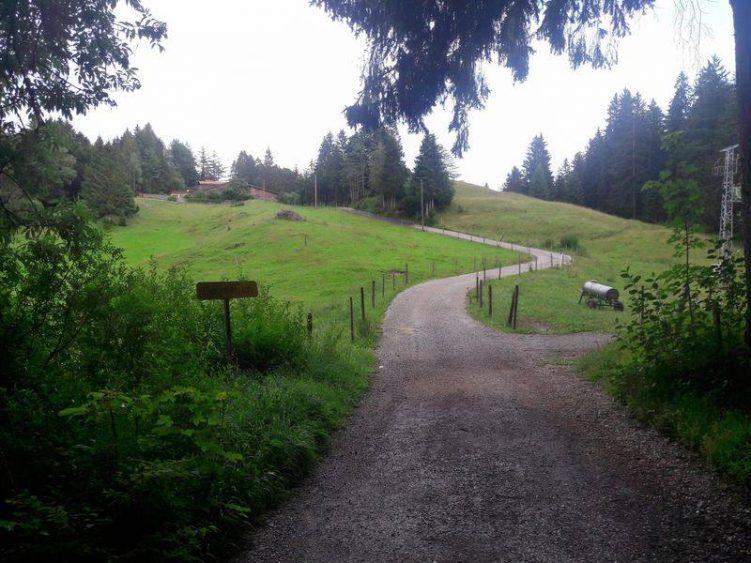 Überblick über die Strecke beim Weiler Goimenen. Vorne Splitt, hinten Asphalt.