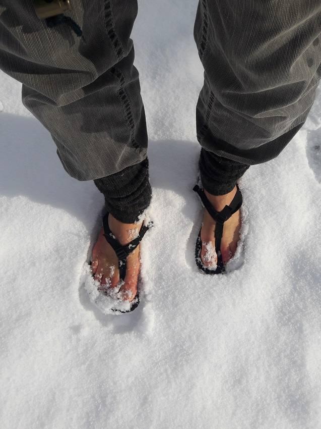 Shammas im lockeren Schnee