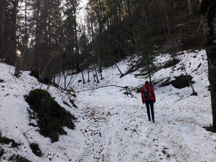 Eva mit Leguano im vereisten Schnee