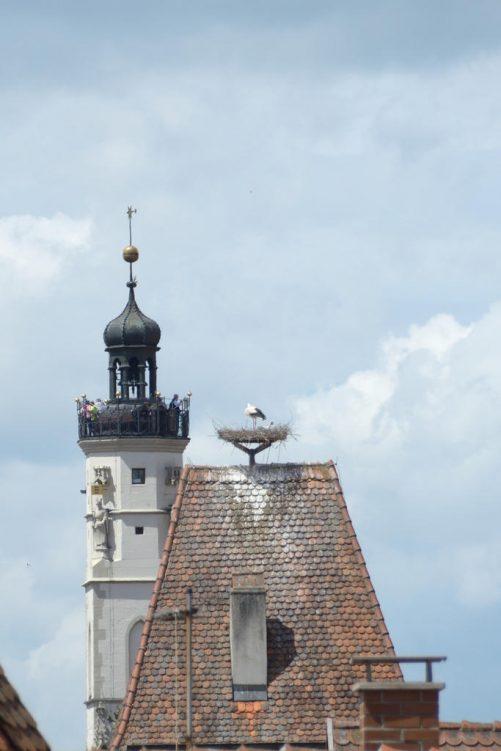 Blick auf den Rathausturm mit Besuchern auf der Aussichtsplattform und Dach mit Storchennest