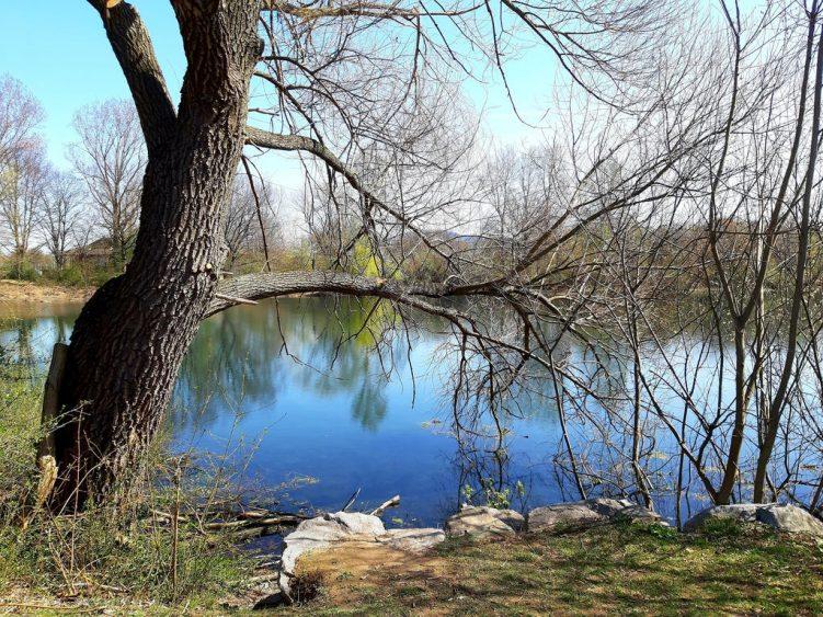 See im Dietenbachpark
